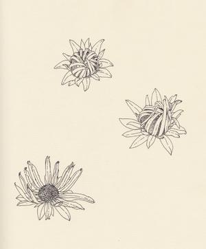 zeichnung_03