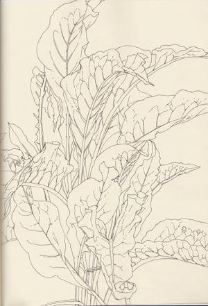 zeichnung_08