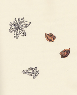 zeichnung_14
